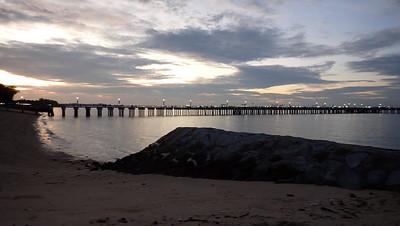 Marine life naturally regenerating on Bedok jetty legs at East Coast Park