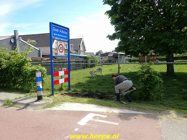 2021-05-28       Alblasserdam      25 Km   (81)