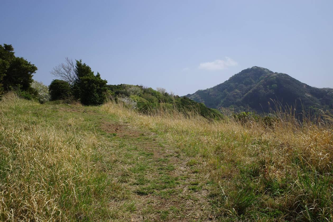 沼津アルプス縦走 草原の登山道