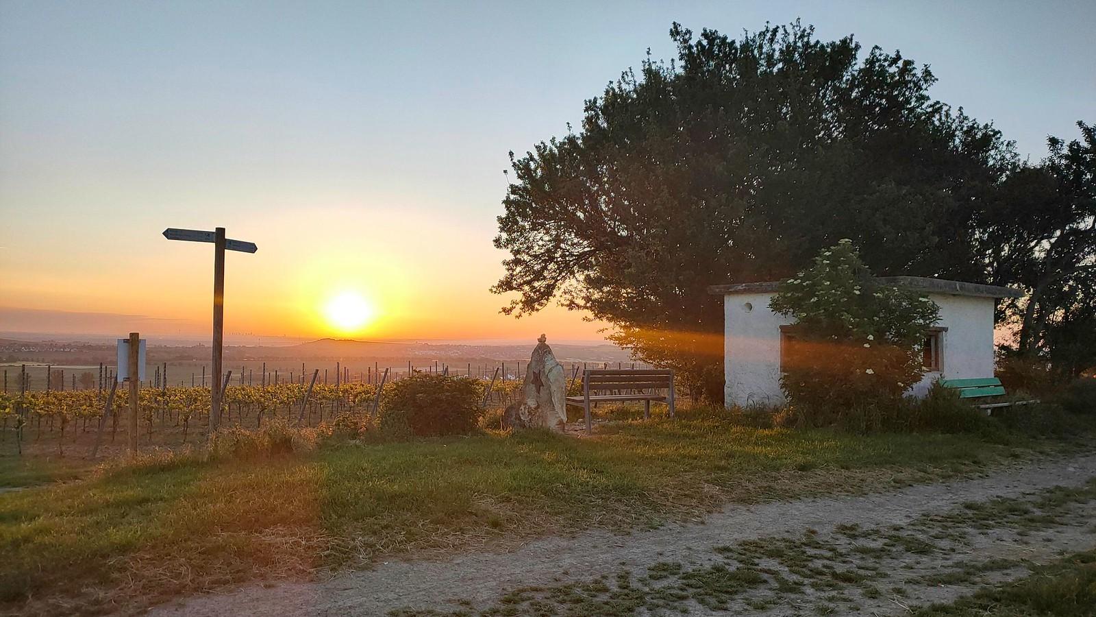 Sonnenaufgang am Wingertshäuschen auf dem Winkel