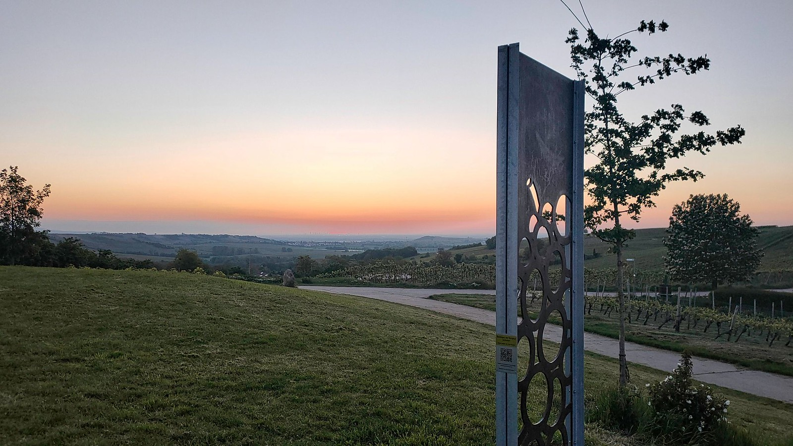 Schönste Weinsicht 2020 Rheinhessen mit Blick nach Rhein-Main