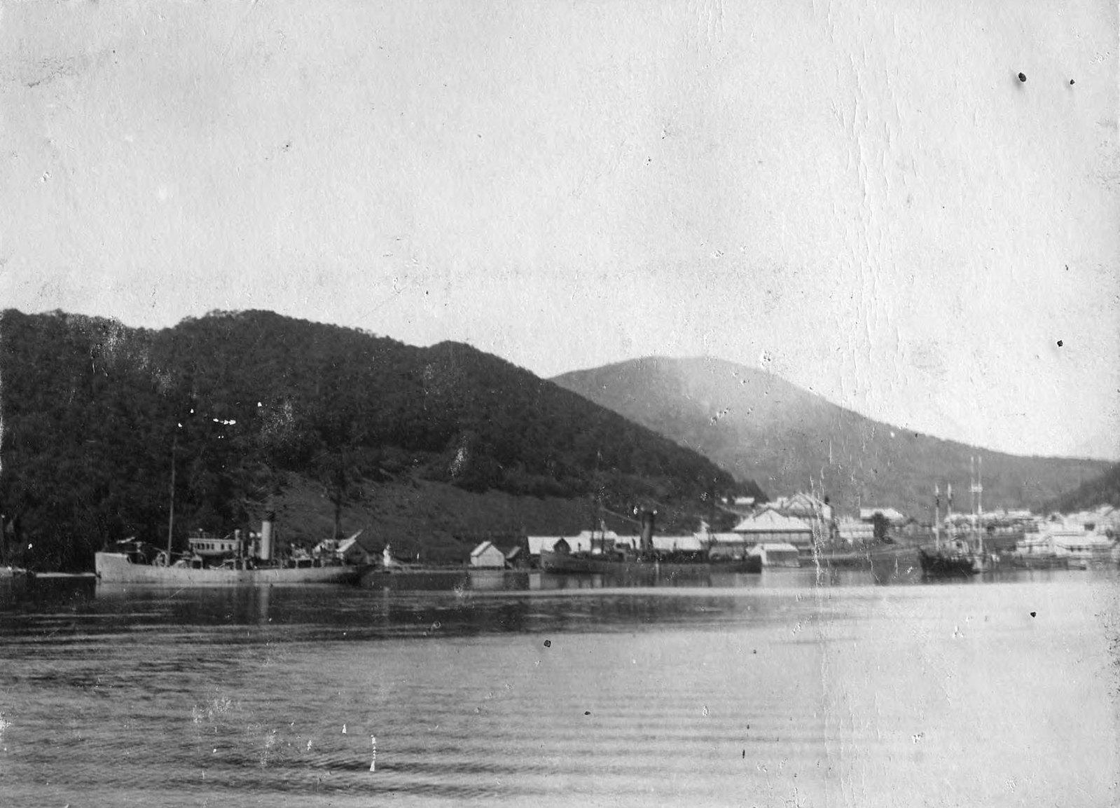 1900. Вид на сопки Никольскую и Мишенную. Видна пристань Добровольного флота