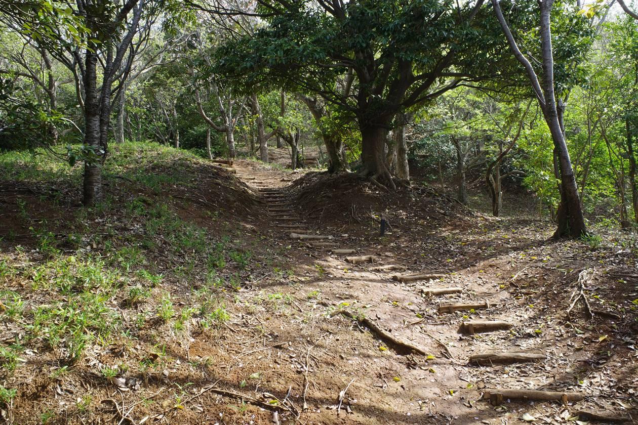 香貫山登山道