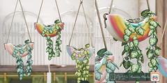 Dahlia - Rainbow Planter - Pride At Home
