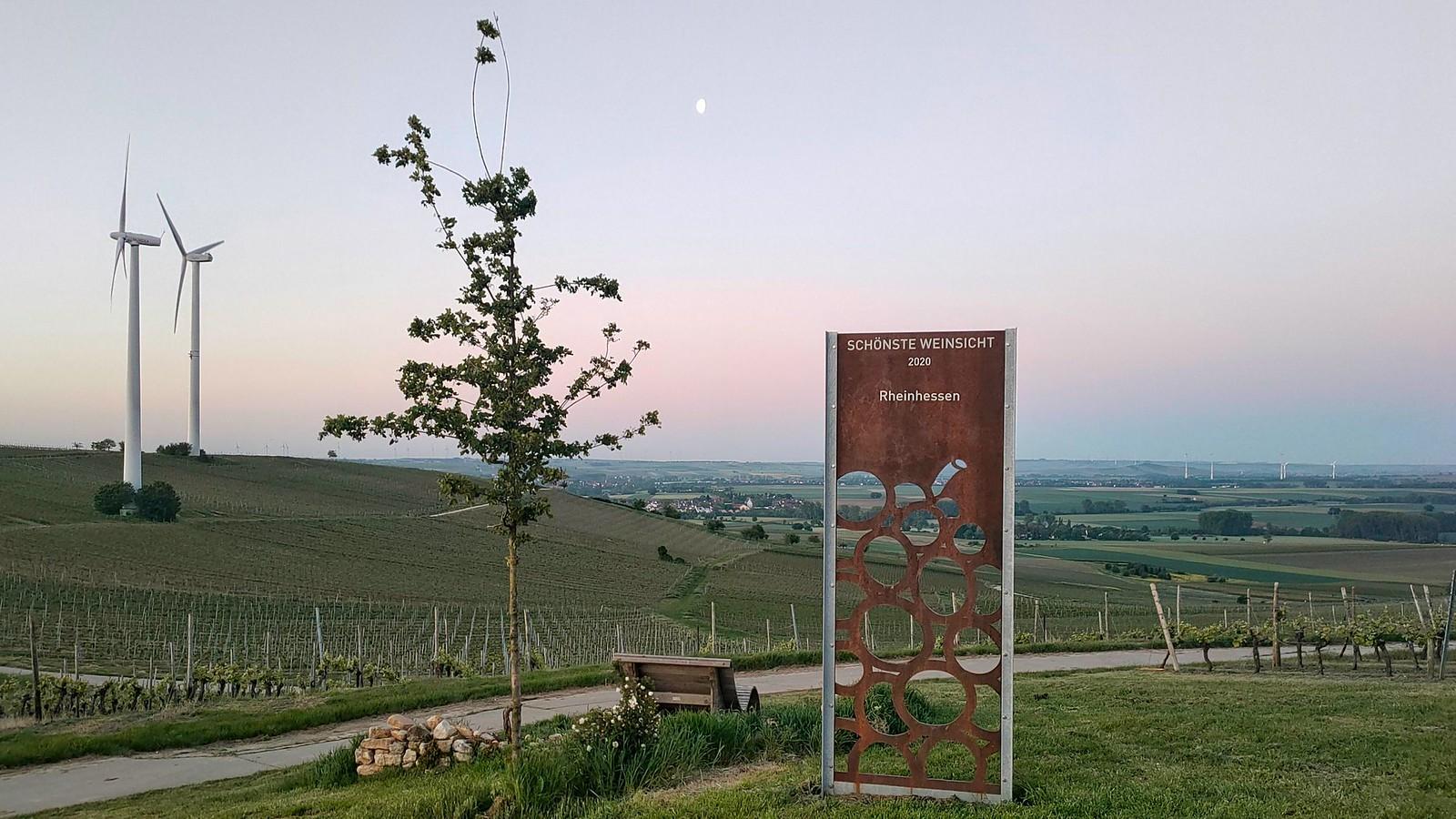 Schönste Weinsicht 2020 Rheinhessen mit Blick ins Selztal