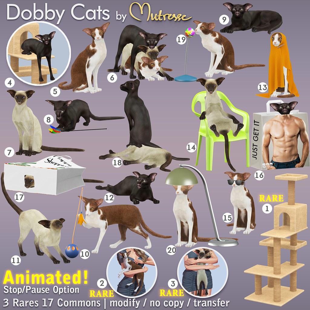 Mutresse@The Arcade in June 2021 – Dobby Cats Gacha Key