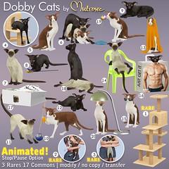 Mutresse@The Arcade in June 2021 - Dobby Cats Gacha Key