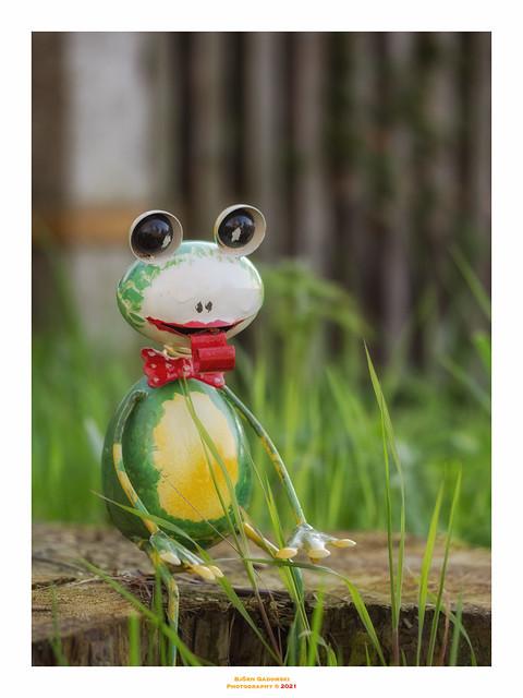 Handmade Frog (Explored!)