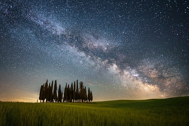 Cypresses in San Quirico at night with milky way - Tuscany
