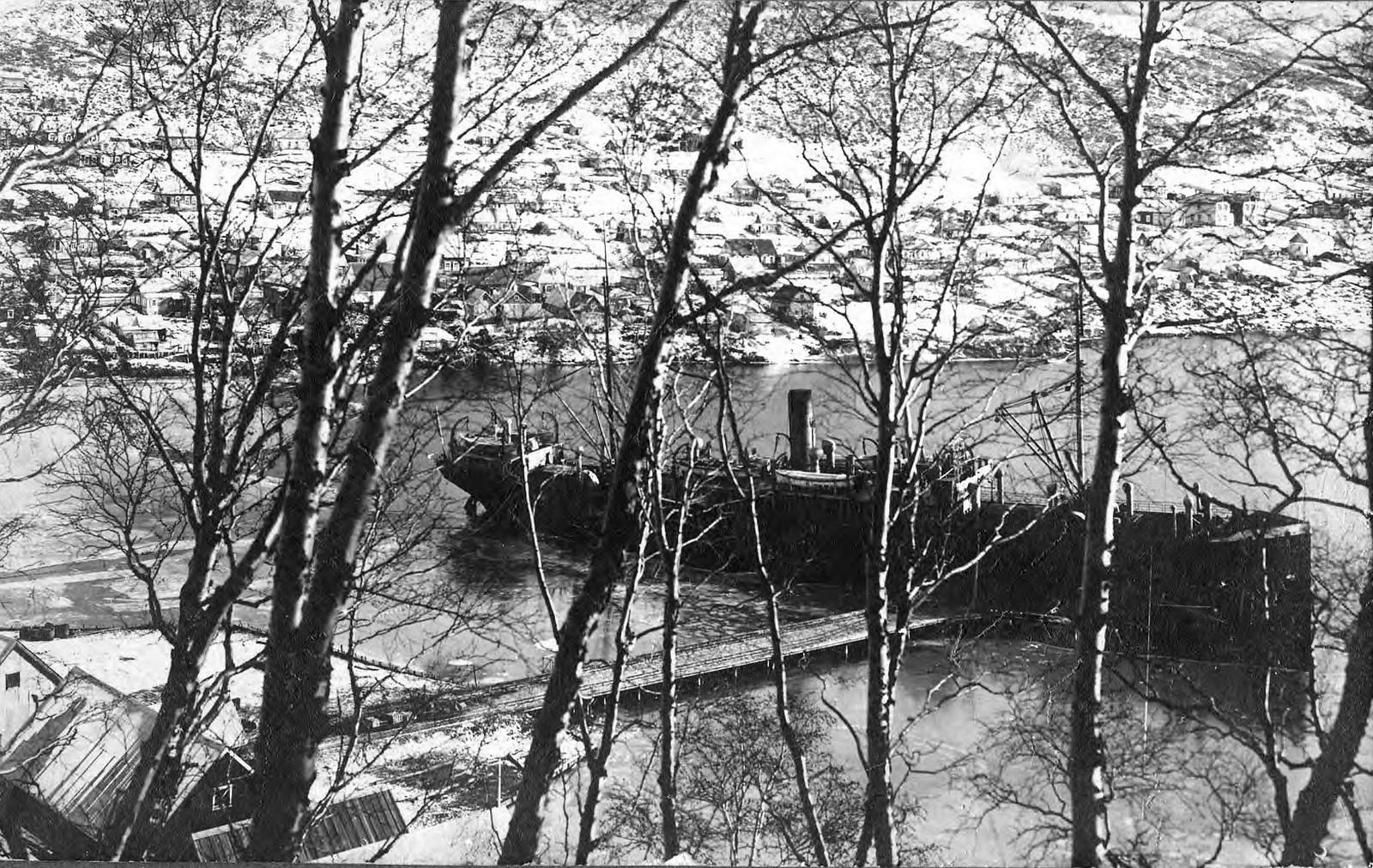 1910. Вид на Петропавловскую гавань
