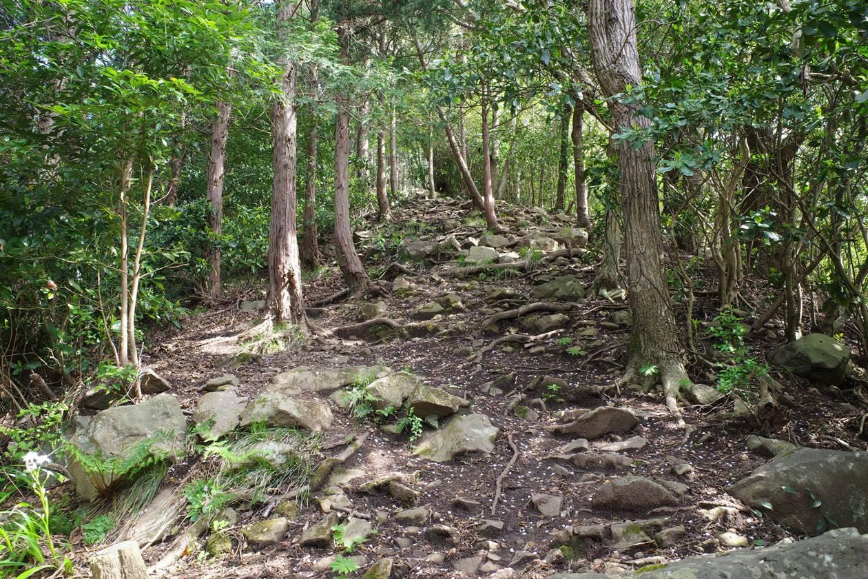 沼津アルプス縦走登山・多比分岐から大平山へ