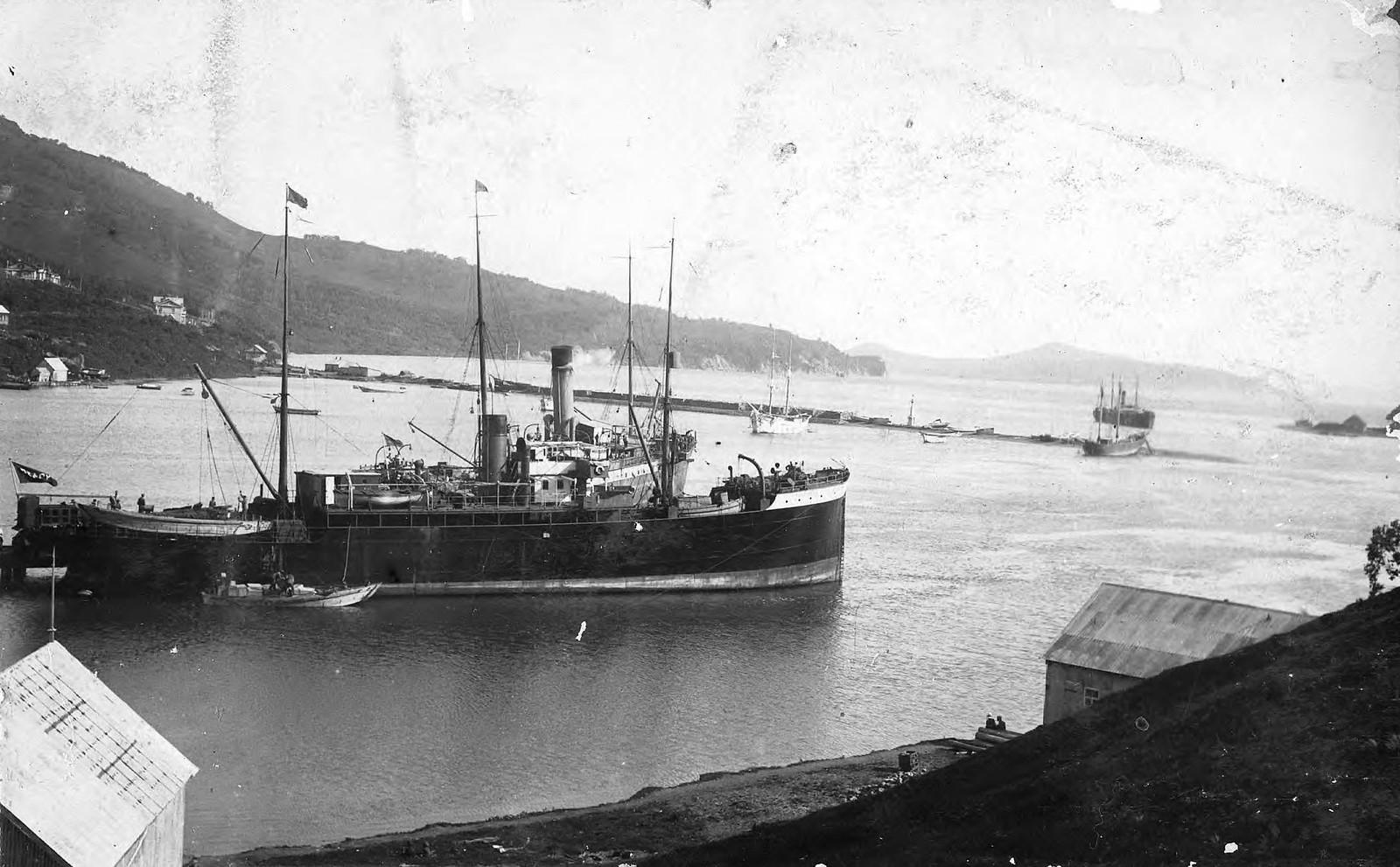 1910. Вид на гавань