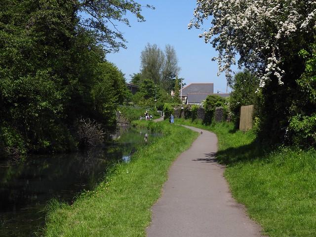 Monmouthshire-Brecon Canal, Sebastopol, Pontypool 31 May 2021