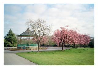 Queen's Park bandstand