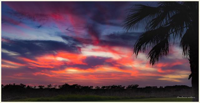 Cielo rojo,  azul , purpura  y dorado al atardecer // Red, blue, purple and gold sky at sunset.