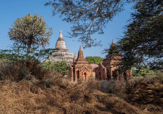 Stupas dans la plaine de Bagan