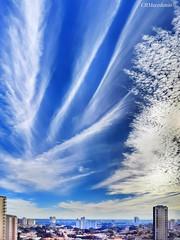 Todo o esplendor de um lindo céu azul
