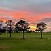 Makai Golf Course Sunset