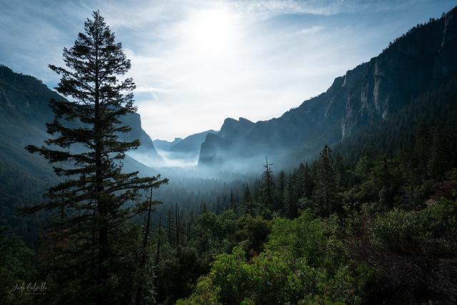 Morning haze entering Yosemite National Park