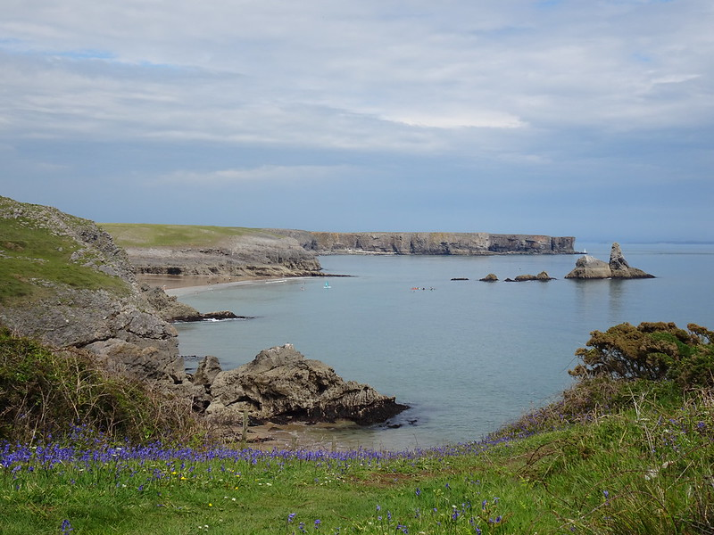 Bluebells and Broad Haven South Freshwater West to Bosherton, around the Castlemartin Peninsula