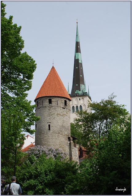 Murallas (Tallin, Estonia, 10-6-2015)