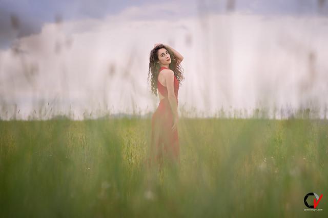 Cielo azul, prado verde, rojo cisne que tus alas bates... El futuro te pertenece.