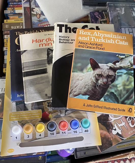 books_6951