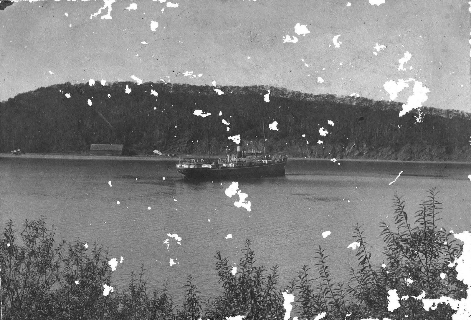 1910. Пароход у Сигнальной сопки в Петропавловской гавани