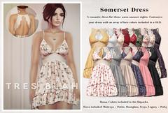 Tres Blah - Somerset Dress for Fameshed June 2021