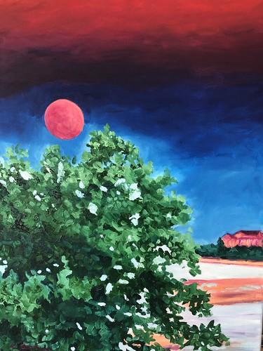 Moonlit Night 18