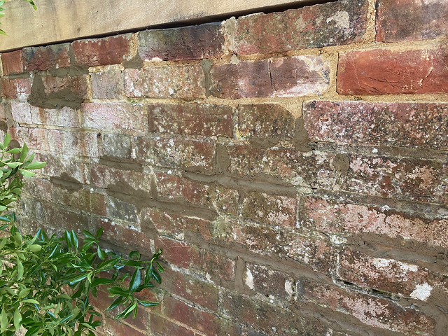 Repaired wall