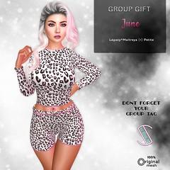 Slackr :: Group Gift {June 2021}