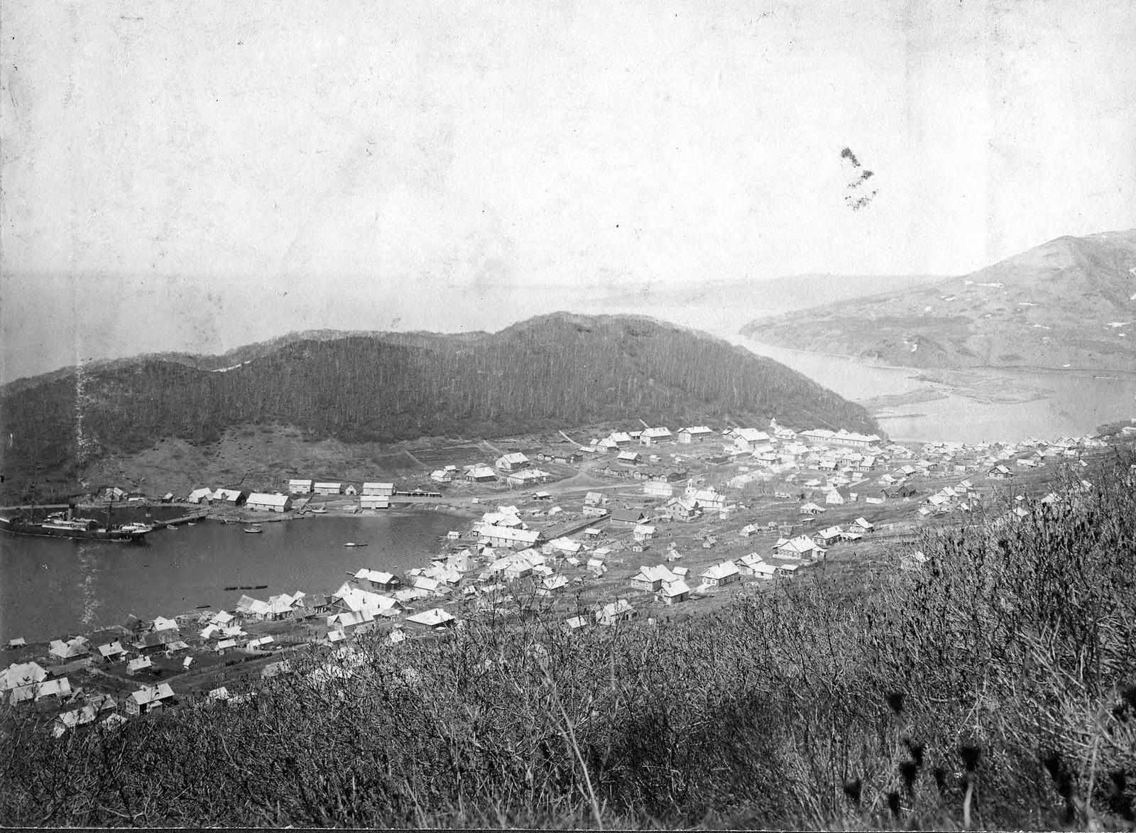 1913. Вид на историческую часть города Петропавловска-Камчатского с Петровской сопки