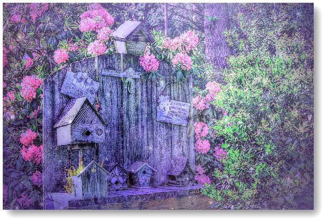 corner of the garden , , ,