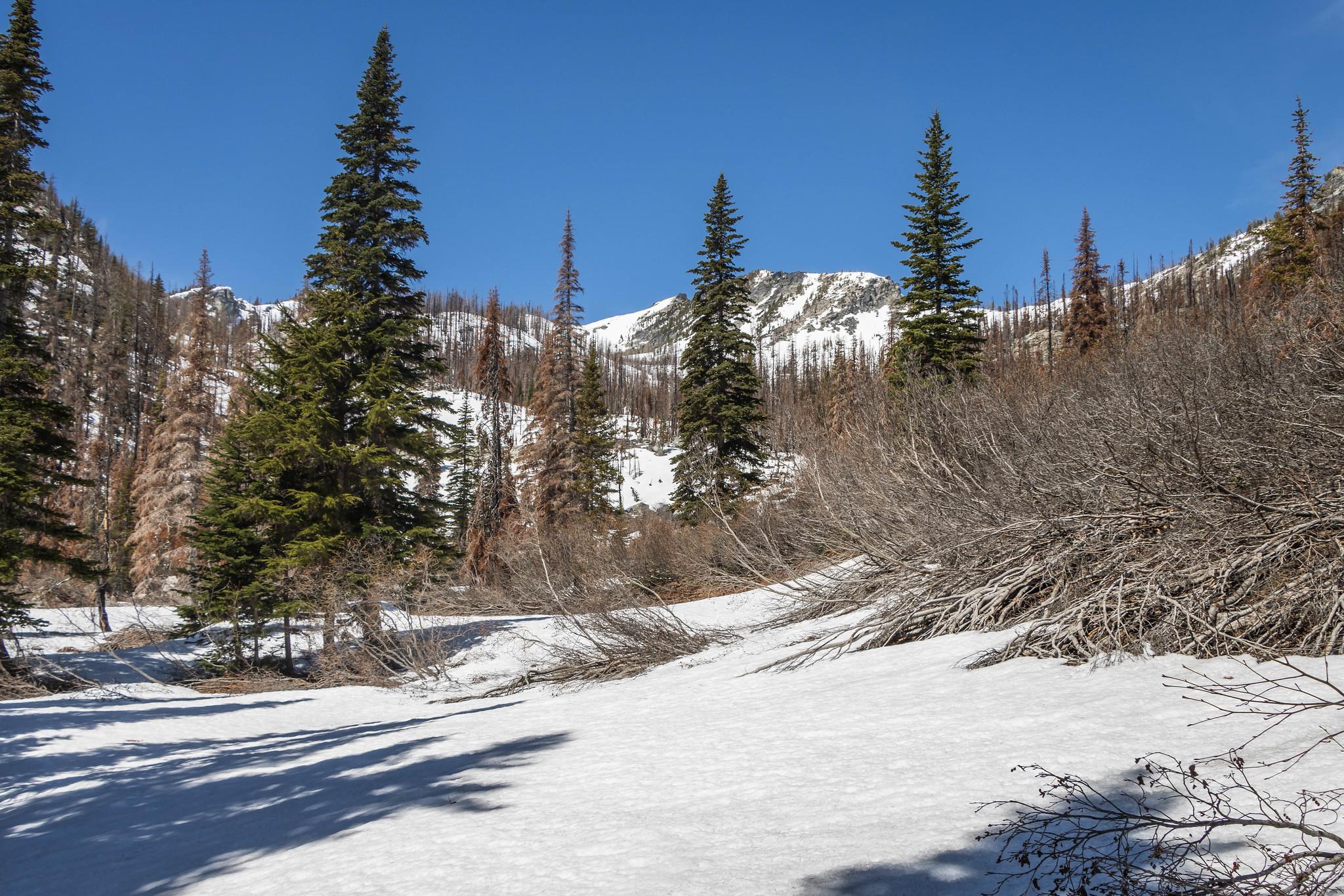 This way to Rennie Peak