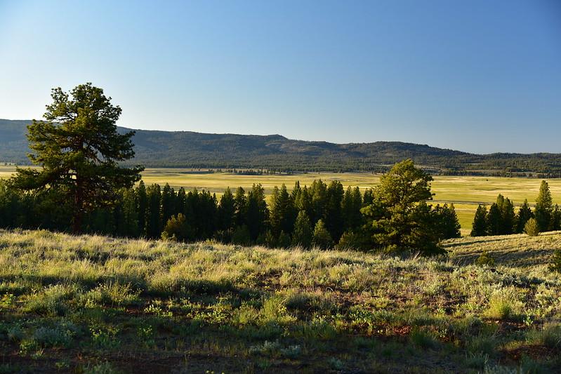 Big Summit Prairie