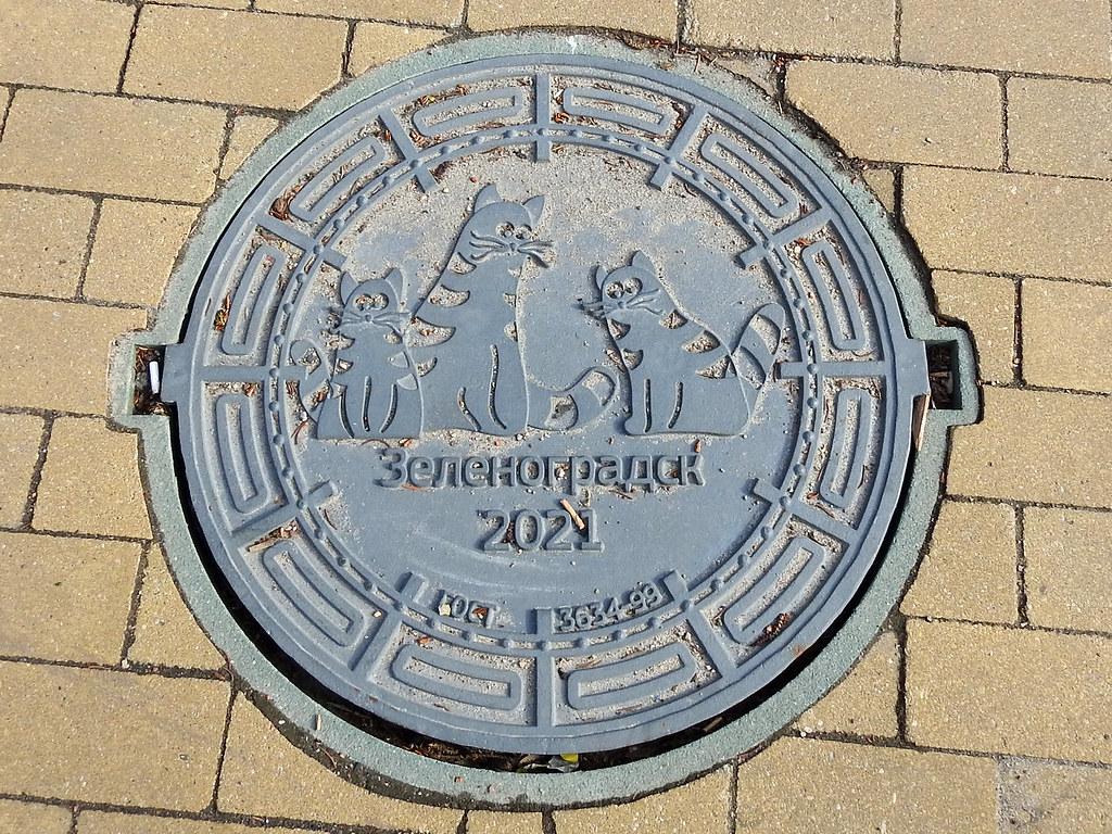 Zelenogradsk 2021