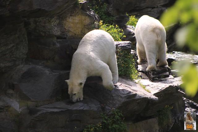 Besuch Tierpark 22.05.21012