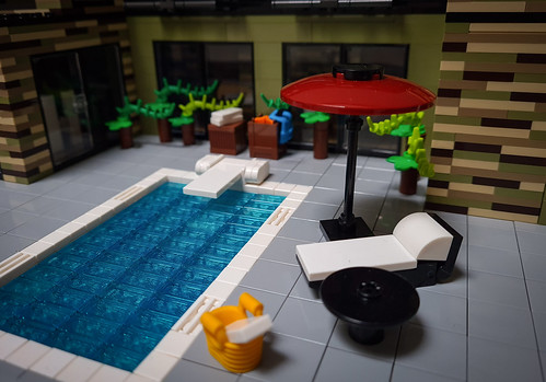 Olive Hill House MOC. By the pool.