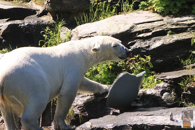 Besuch Tierpark 22.05.21025