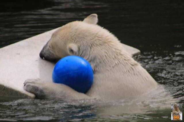 Besuch Tierpark 22.05.21005