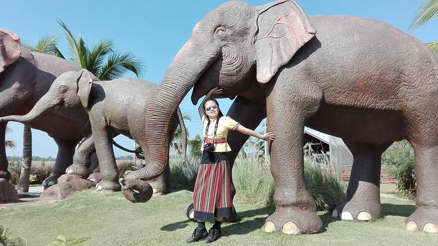 Thai Elephant and Panda