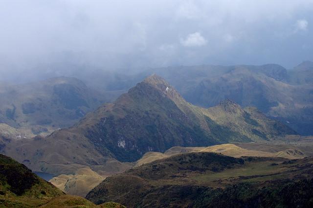 High Andes. Around Papallacta Pass; altitude around 4000 meters.  Ecuador.