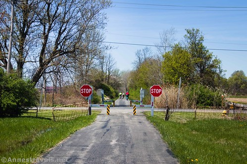 A road crossing on the Peanut Line of the Clarence Pathways, New York