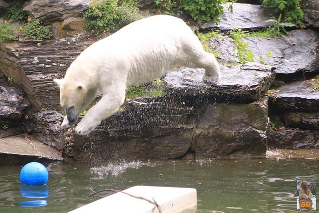Besuch Tierpark 22.05.21003