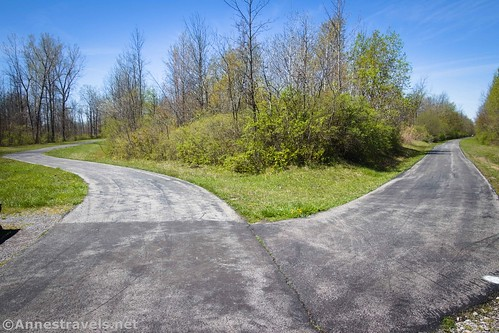West Shore Trail (left) and Peanut Line Trail (right), Clarence Pathways, New York