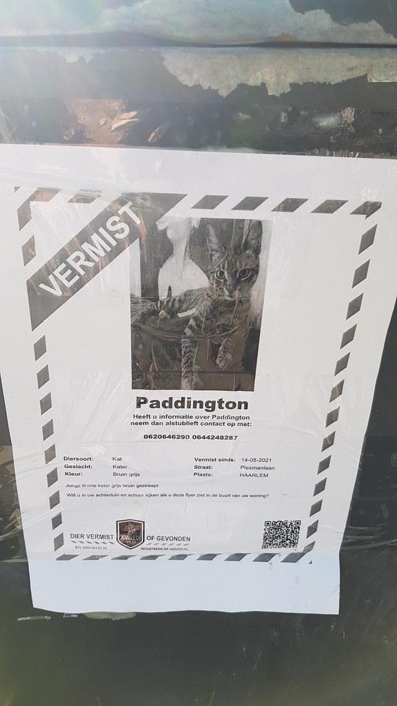 Vermist Paddington