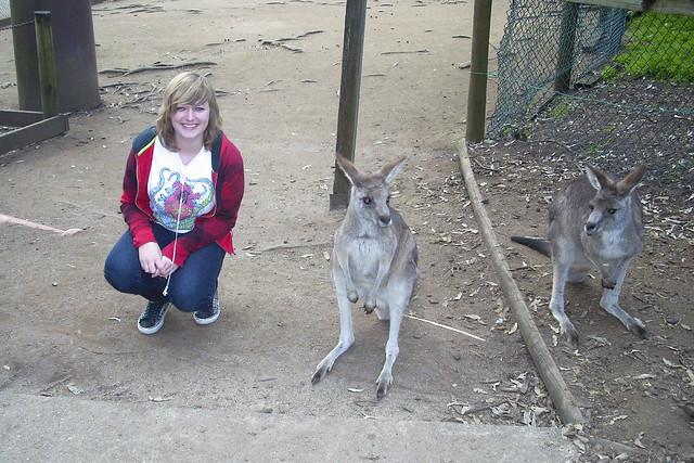Caitlin and Kangaroo's