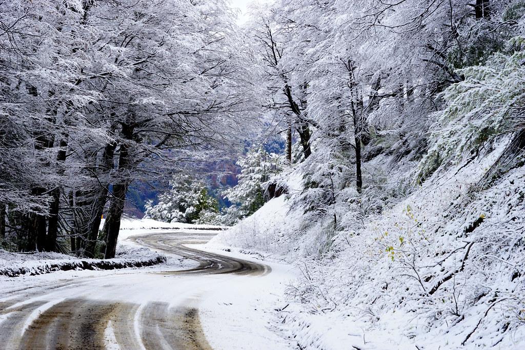 Camino en la nieve