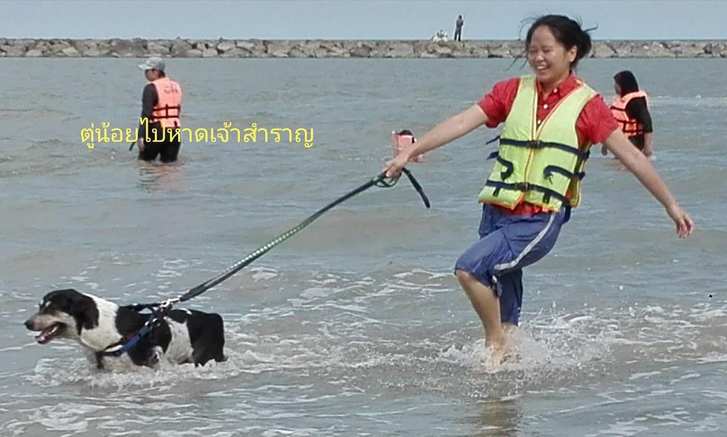 ชวนกันเที่ยวทะเลไทย